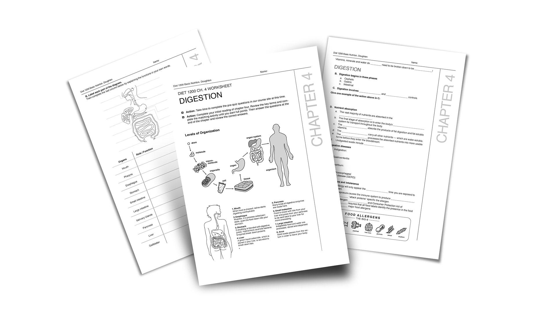Chloe Burton Design - Information Design