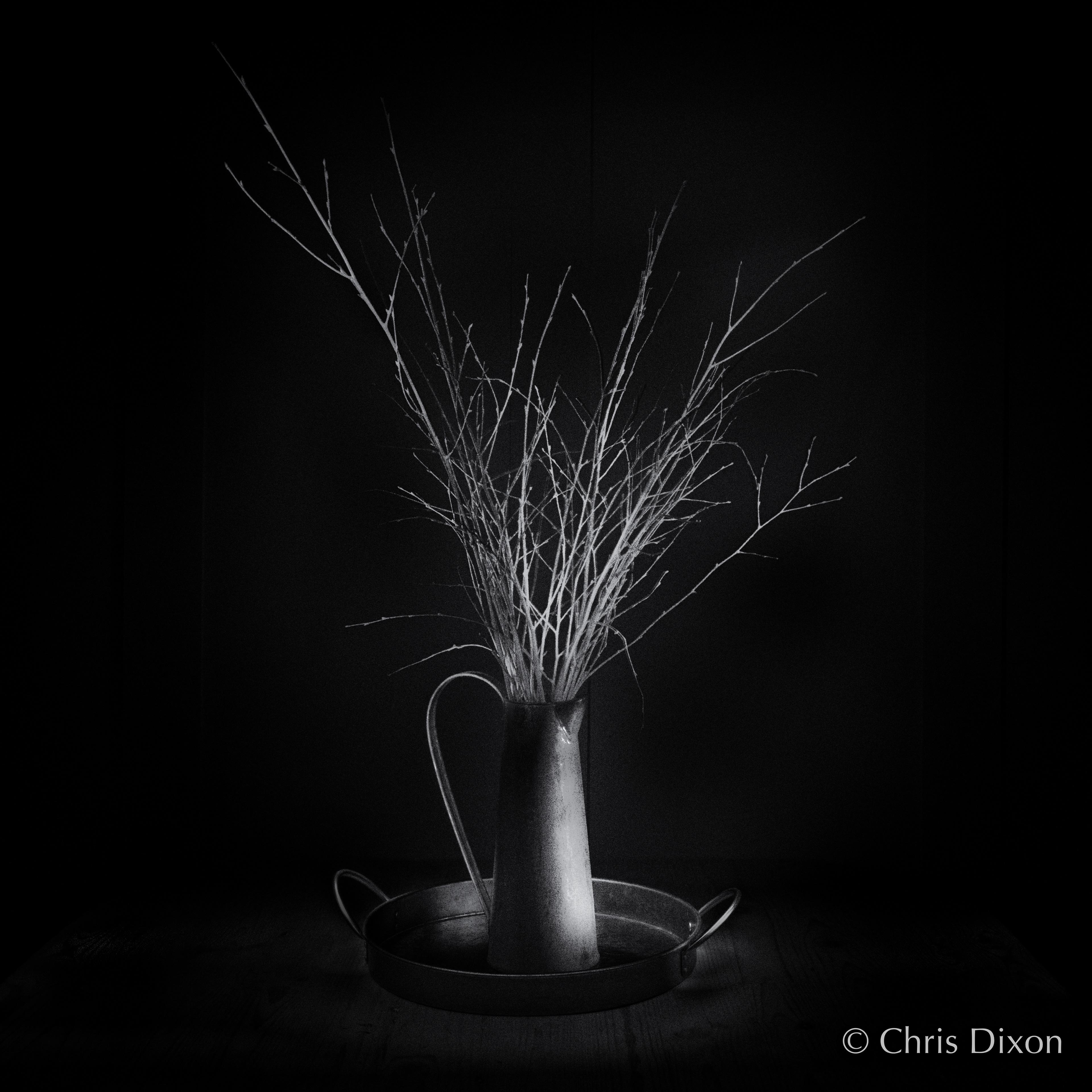 Chris dixon photography still life
