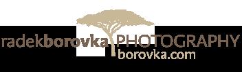 Radek Borovka