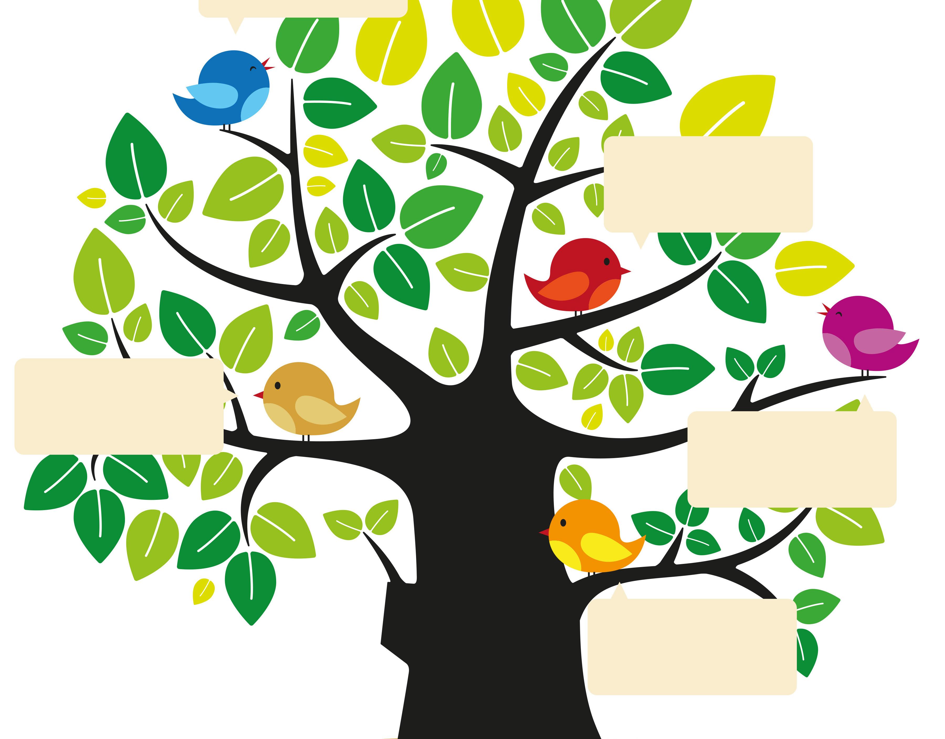 картинки дерева для проекта деятельностью