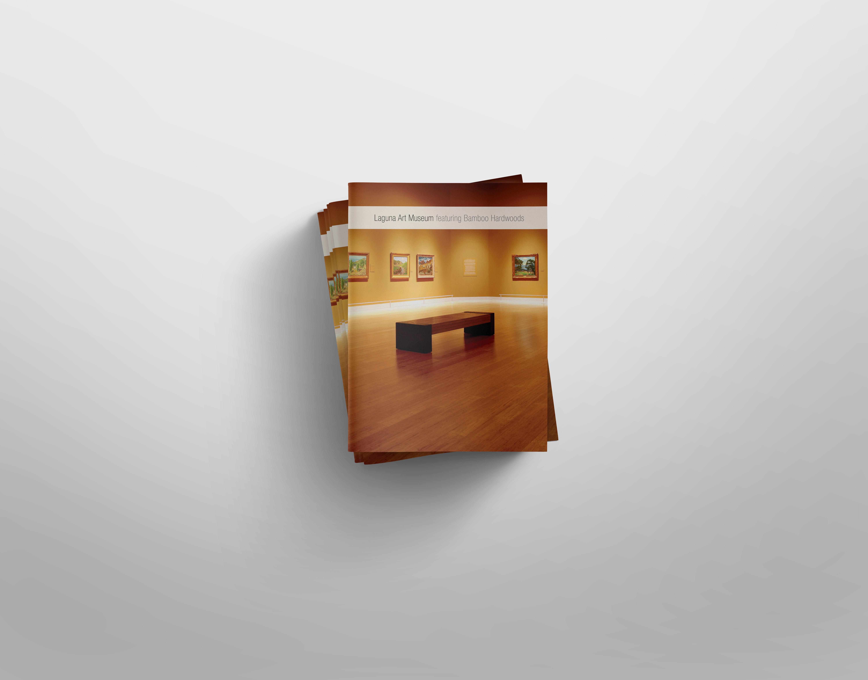 Chris Alfstad - Graphic Designer - Case Study - Laguna Art