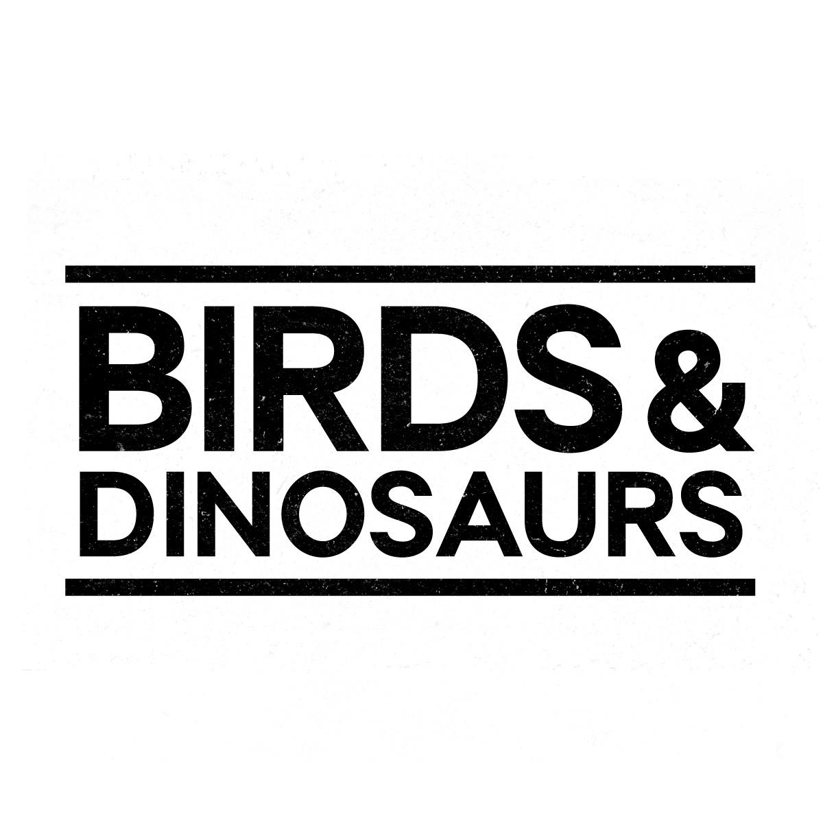 Birds&Dinosaurs Studio