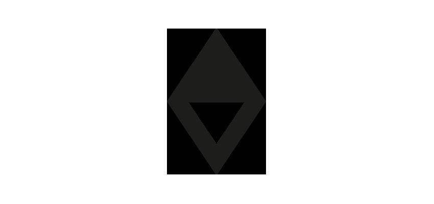 Vasava Logo