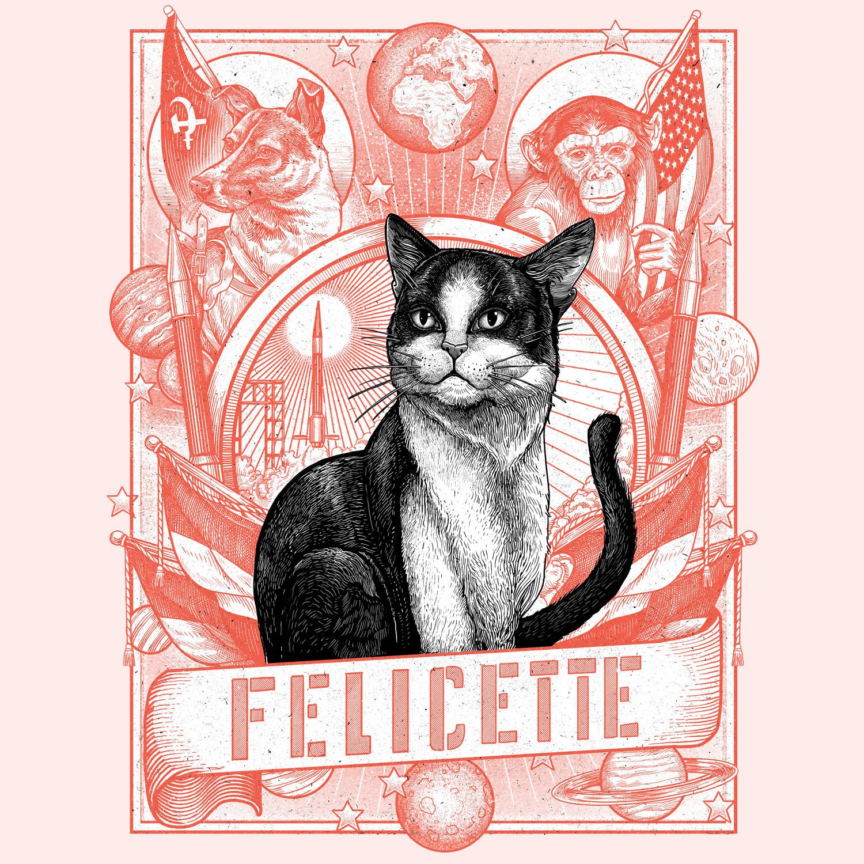 Philip Harris Illustration Le Parisien Magazine Felicette The Cat