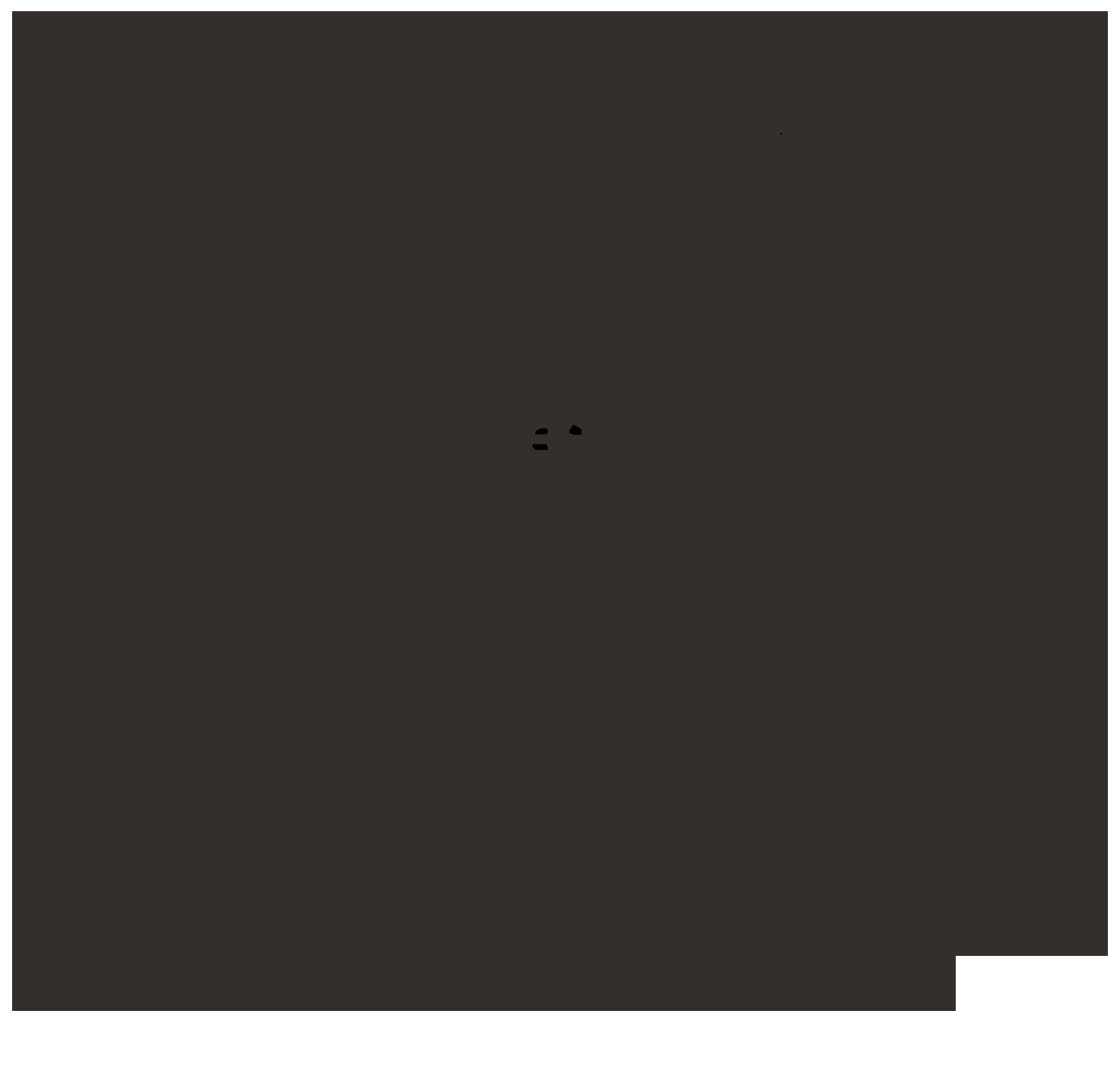 Berta Garces Lardies
