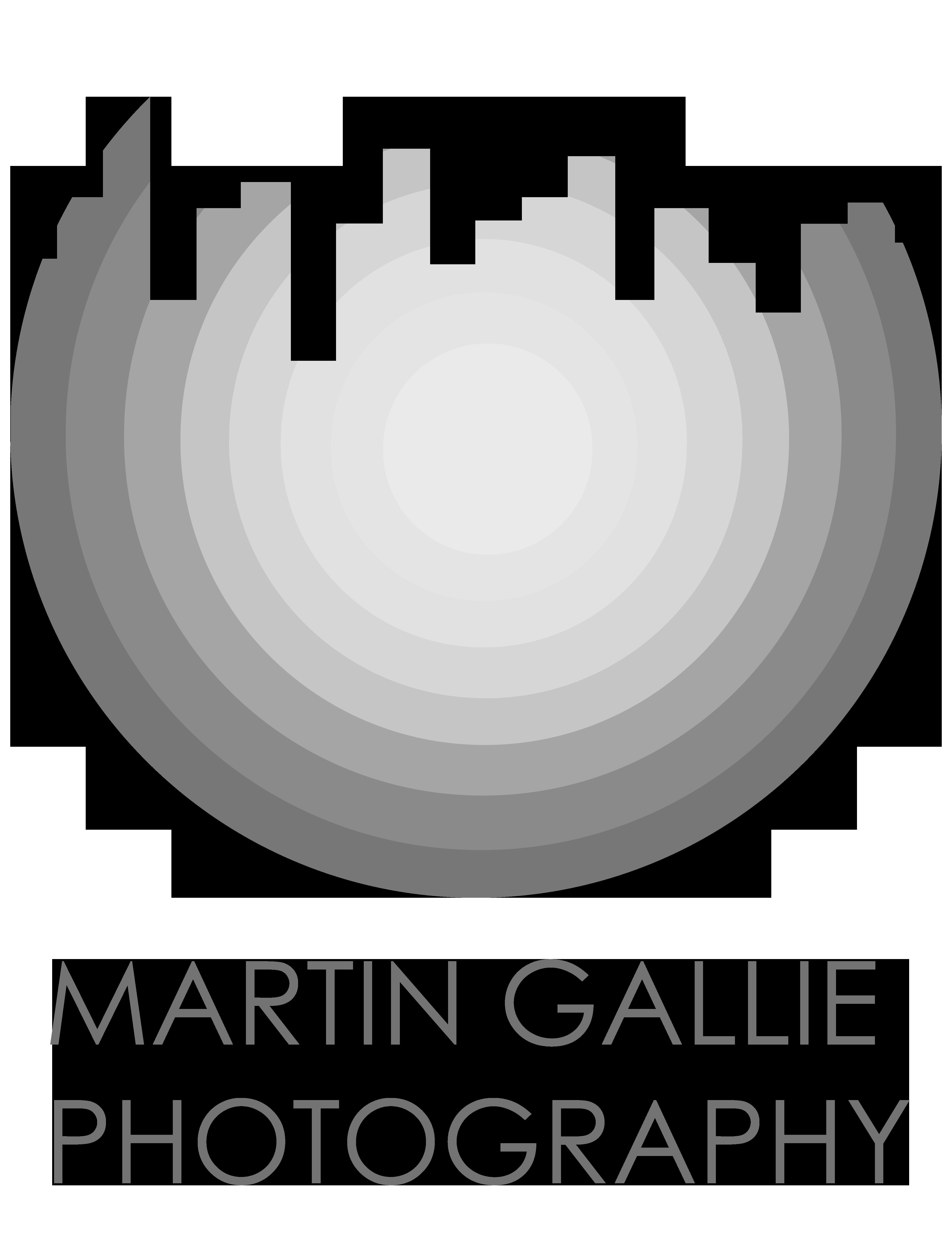 Martin Gallie
