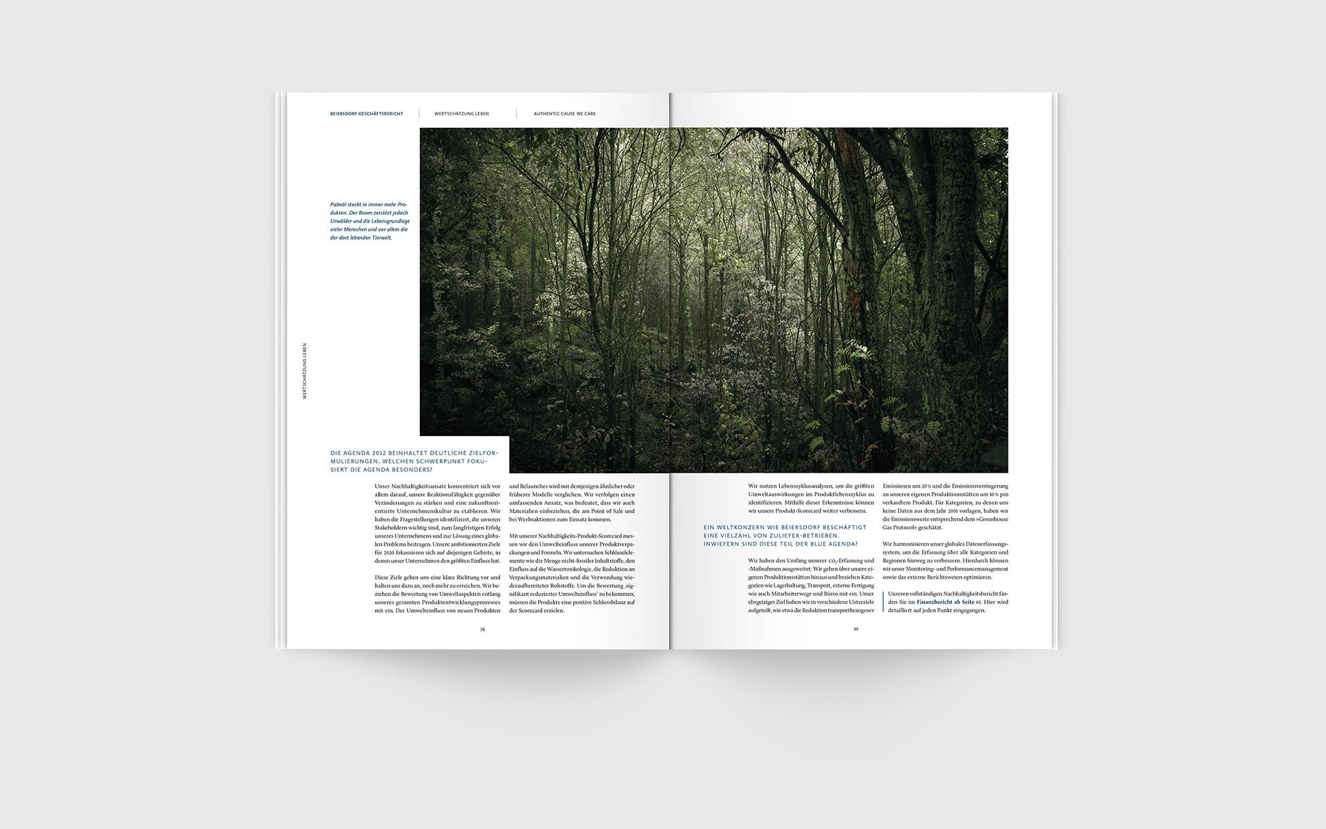 Stefan Große Halbuer - Beiersdorf Annual Report – Case Study