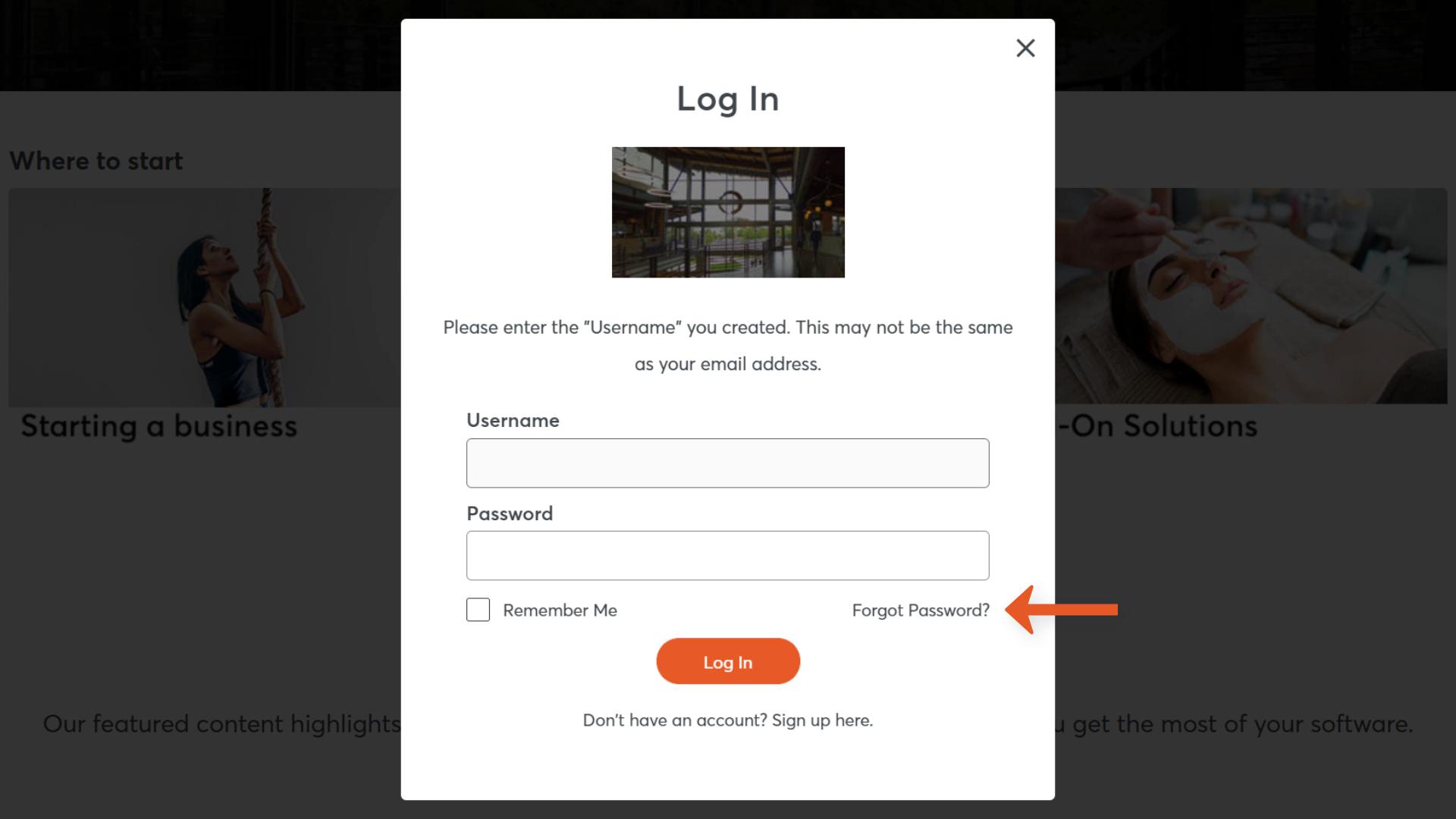 Log in window (reset password)