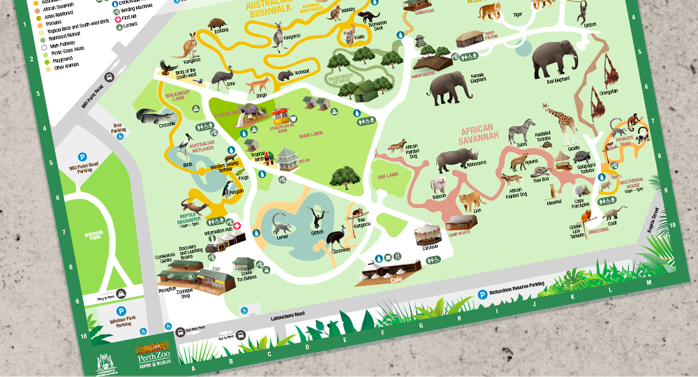 Perth Zoo Map Rebecca Mills Freelance Illustrator   Perth Zoo Icons
