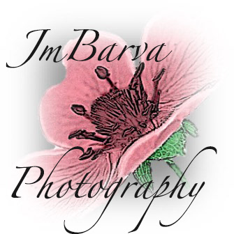JmBarva Photography