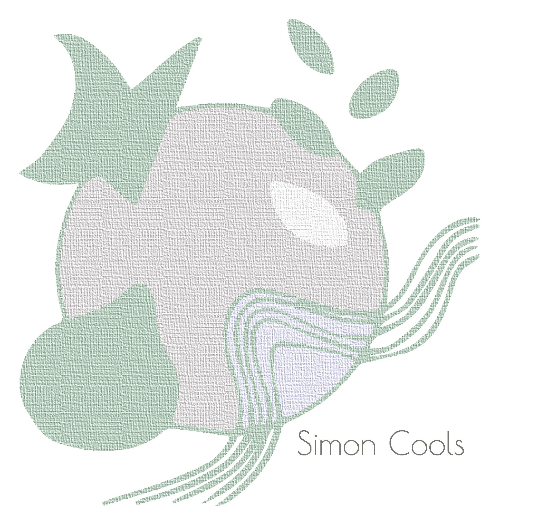 Simon Cools